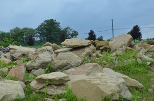 Landscape Rock various (8)