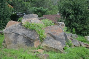 Natural Boulders in all sizes