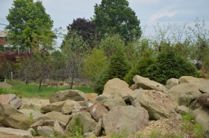 Various Sizes Natural Boulders